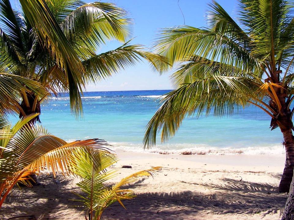 beach-2924151_960_720.jpg