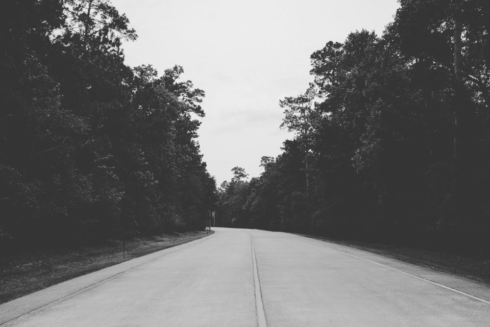 Black and white photo of winding road surrounded by trees
