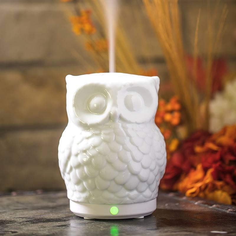 Sparoom Diffuser Fall Owl