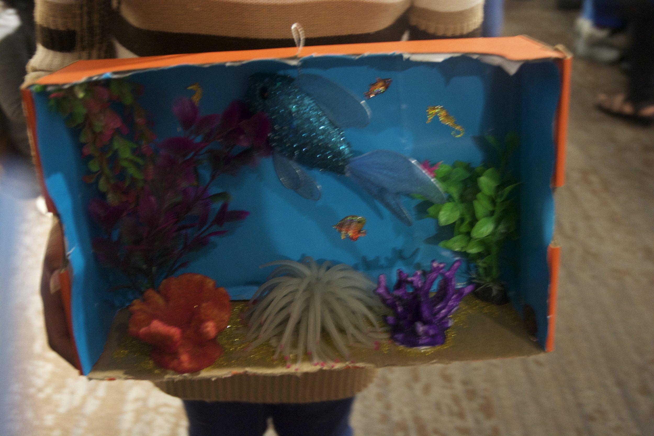 Jaila Foster's ocean biome.