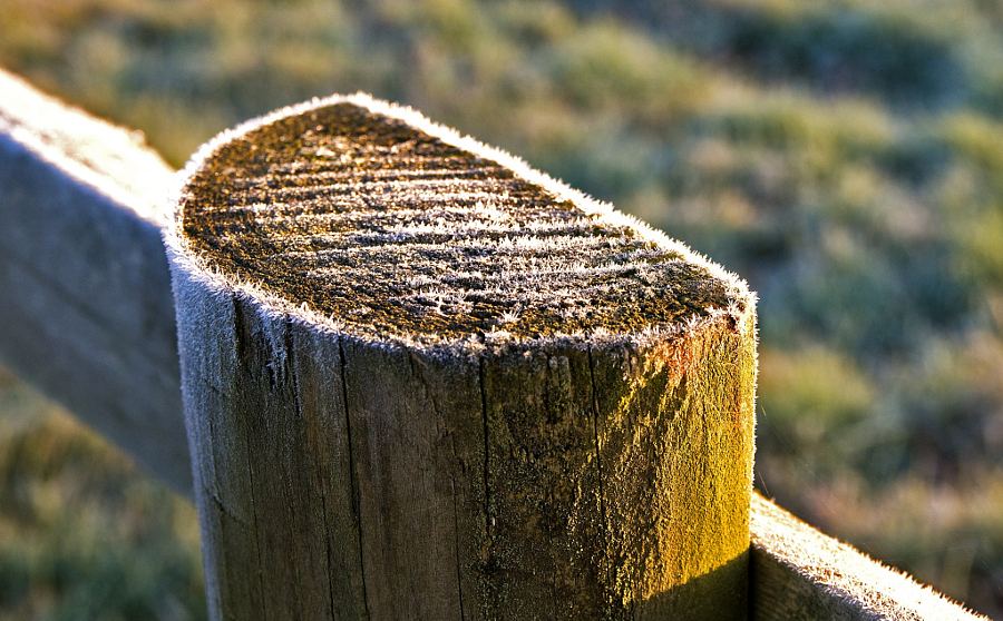 Fence post on ice