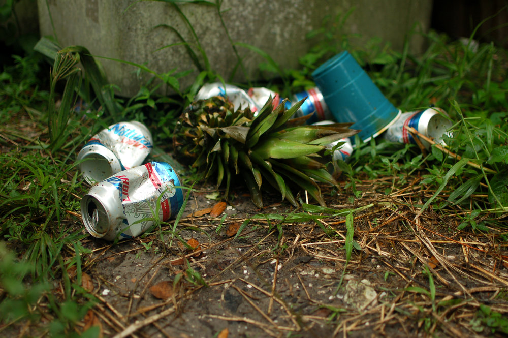 i 4 - compost - natty light does is non compostable - photos-5861.jpg