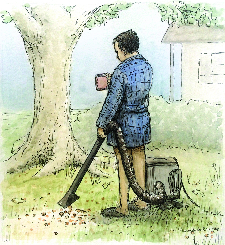"""""""Vacuuming Acorns"""" by Vivian Hansen de los Rios. All the rights of this image belong to Two Rivers Creative. You can share it on social media as long as you credit the name of the author and add a link of this website."""