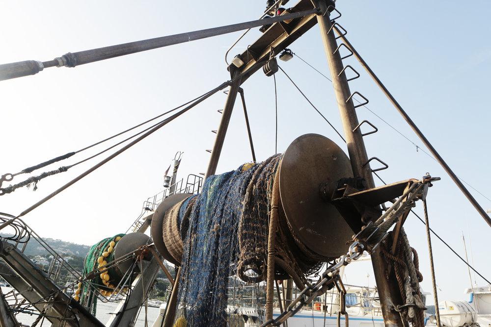 Sustainable Seafood_Leeroy