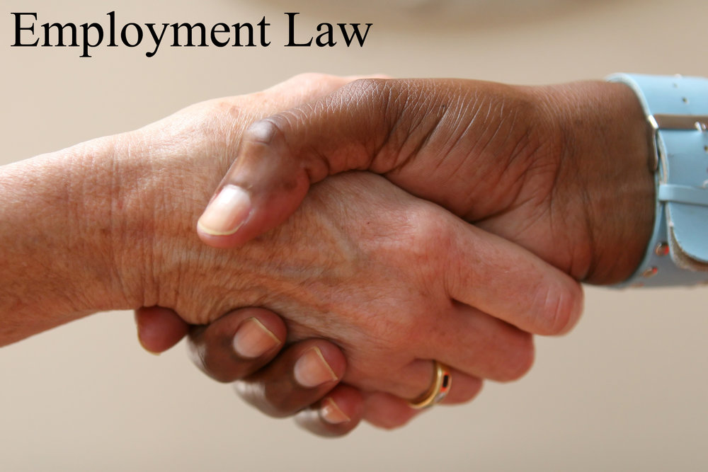 Employment Law copy.jpg