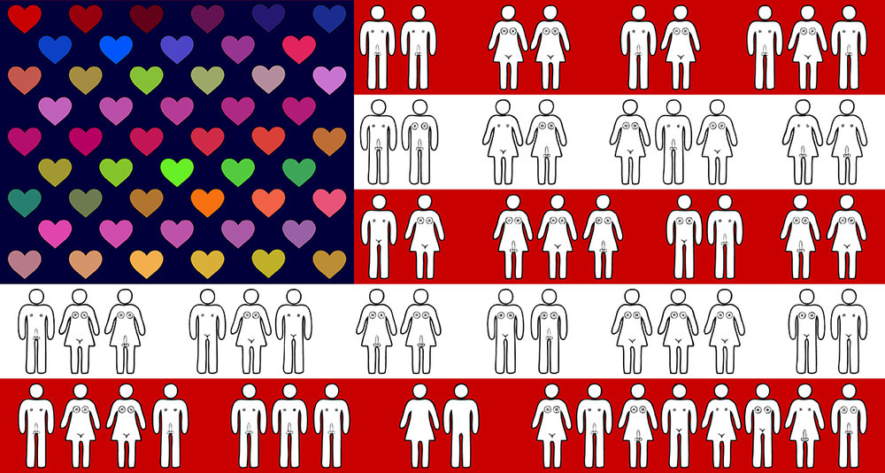 "Freedom to Love - Flag Archival Print on Premium Matte Paper 12 x 24"" or 24 x 48"""