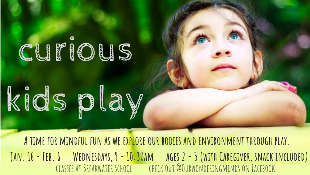 Curious Kids Playgroup - Join us for one or all four winter of these Wednesdays as we explore our bodies and our environment through indoor play. There will be a variety of toys and activities offered and kids can explore freely, as they develop their own interests and curiosities. A great opportunity to get out of the house and play with others this winter! Snack is included.Class runs✦Wed, Jan 15 - Feb 6, 9-10:30 AM