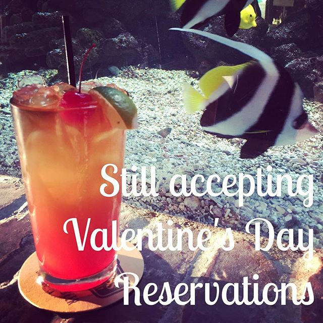 Make your reservation today! #valentinesday #eatfish #fishhouseveracruz #maitai #aquarium #february14 #seafood #sanmarcos #northcountysd