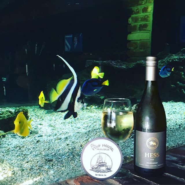 Our Wine of the Month...Hess Chardonnay. Being served through December  #hesswinery #napa #napavalley #california #aquariums #seafood #sanmarcos #oldcaliforniarestaurantrow
