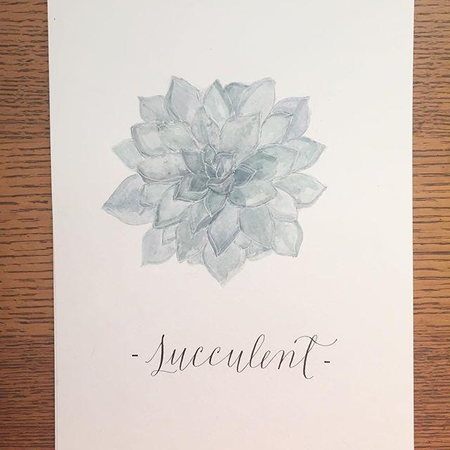 you don't totally succ!  #sopunny #watercolor #calligraphy #bosslady #succulents #moderncalligraphy #instaart #smallbusiness #productdesign #practice #script #quaintrelle #quaintrelledesign #bigdreams