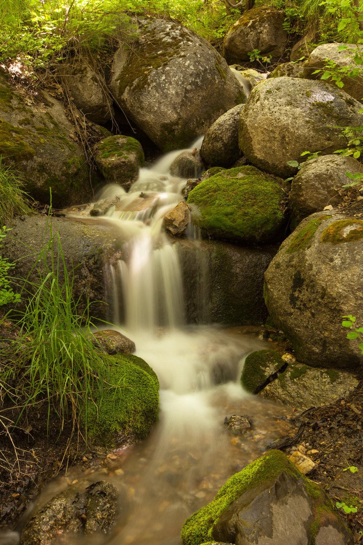 Waterfall, Silver Lake Road. June 2016