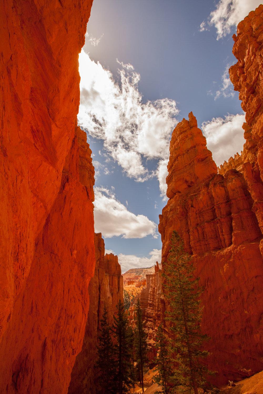Bryce Canyon. May 2016