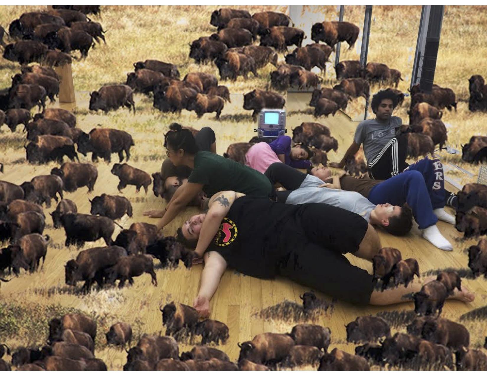 building a buffalo