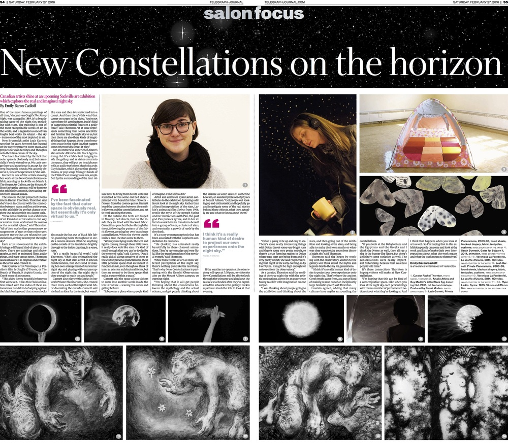 New Constellations Art Exhibit - Feature for New Brunswick Telegraph-Journal, March 2016