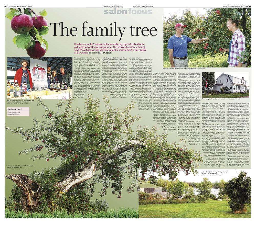 Feature for New Brunswick Telegraph-Journal, Sept 23, 2017