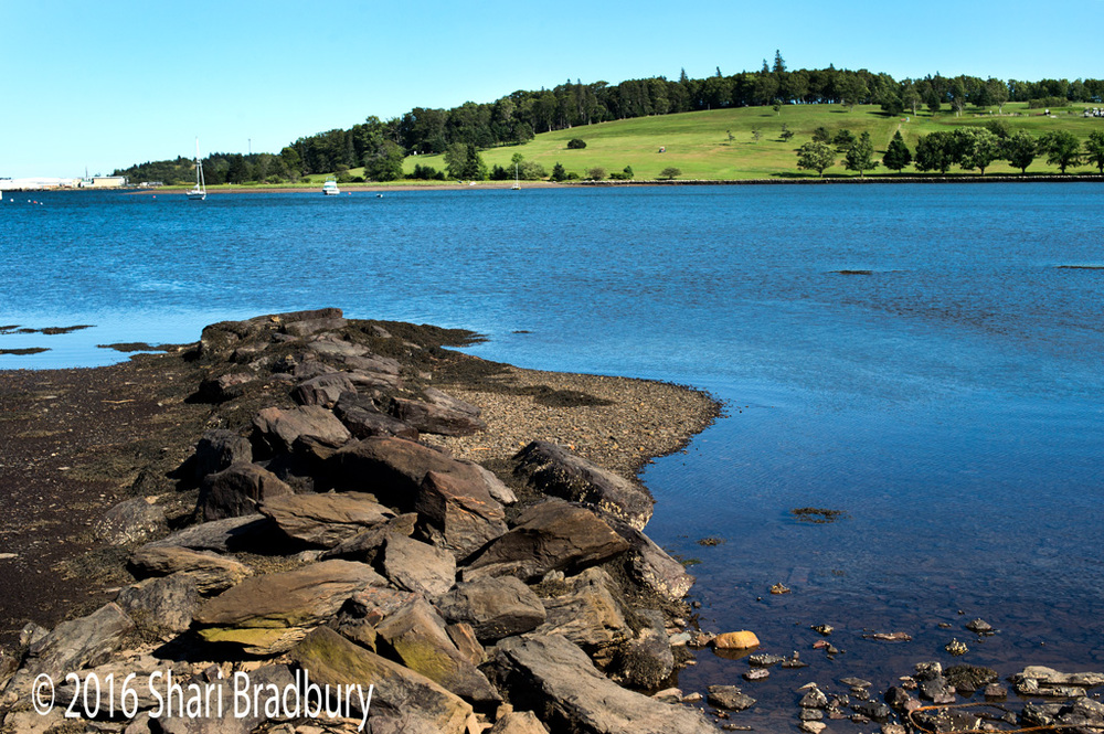 The Bluenose Golf Course across the harbour from Lunenburg.