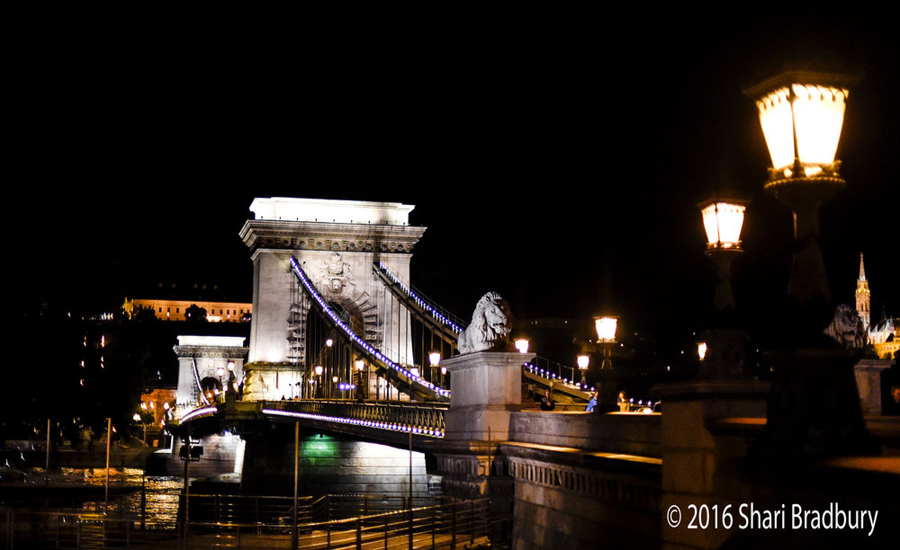 The Széchenyi Chain Bridge.  For centuries only a pontoon bridge connected Buda and Pest.  Legend has it that Count István Széchenyi (1791-1860) came up with the idea of constructing a permanent bridge across the Danube in December of 1820 when he received news that his father had become ill and then died in Vienna.  Because of the hard winter, the pontoon bridge was out of use and he was stranded on the Pest side, unable to be at his father's side.  He then vowed he would finance construction of a bridge over the Danube, regardless of the costs, so that no one else had to suffer that kind of pain.  Another legend says that he had a mistress on the other side that he wanted to be able to visit more freely.  Others say maybe he just wanted to boost the economy but, of course, the legends are far more interesting.