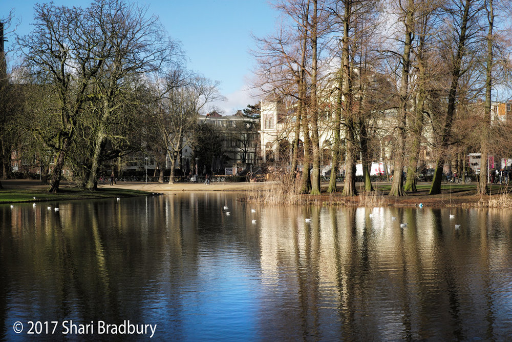 Amsterdam has many beautiful parks.  This was taken in Vondelpark, in the heart of the city.