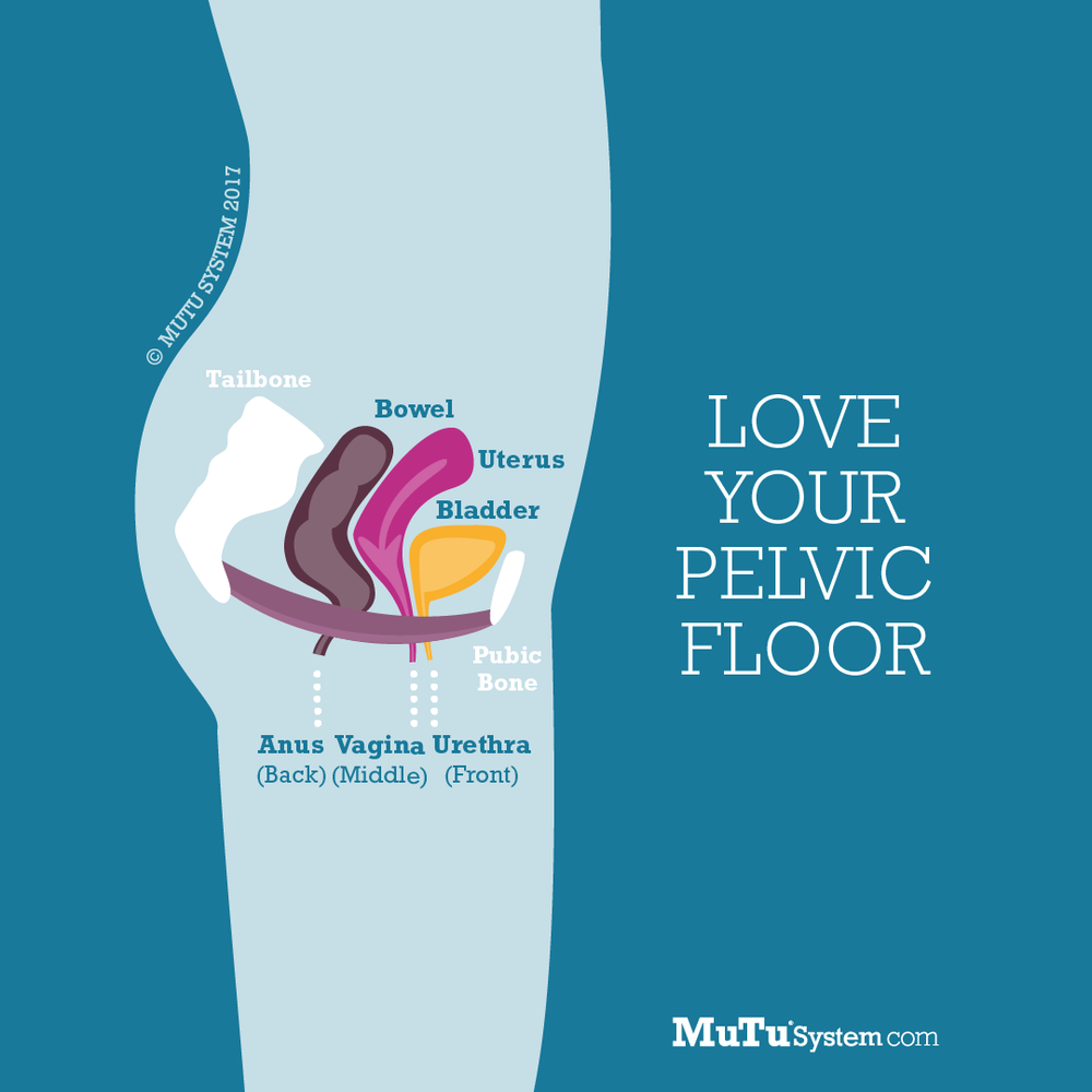 MuTu-System-What-Is-Pelvic-Floor-Weakness-Square-Pain-Free-Clinic-Denver.png