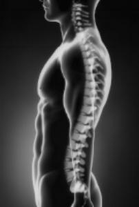 iStock_gray_Black_SpineMedium.jpg