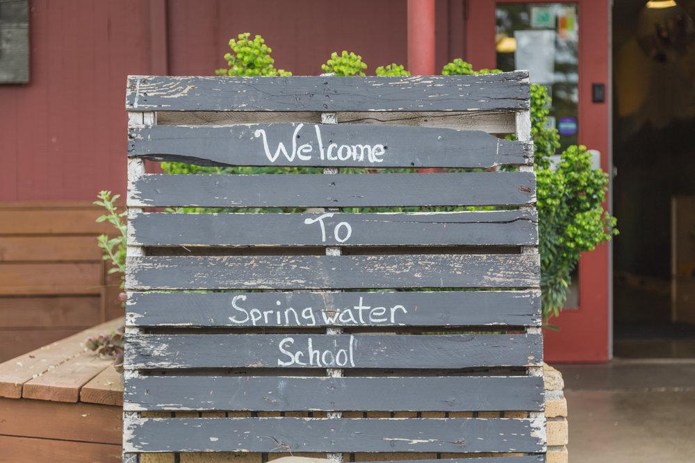 Springwater-1.jpg