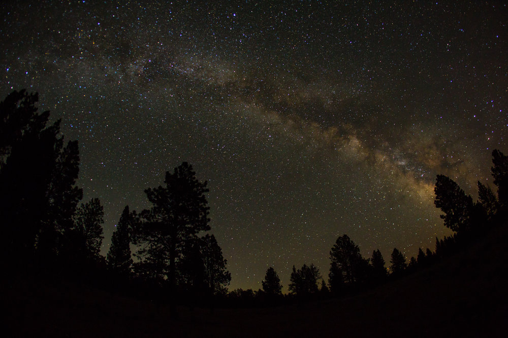 Night sky © Leslie Kehmeier