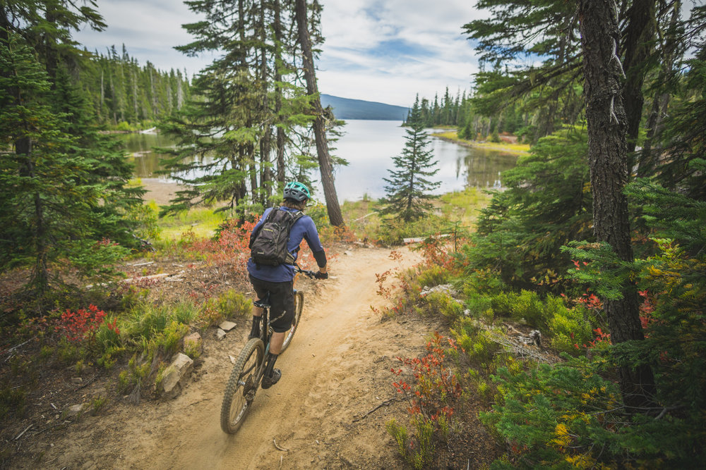 Waldo Lake Trail © Gabriel Amadeus