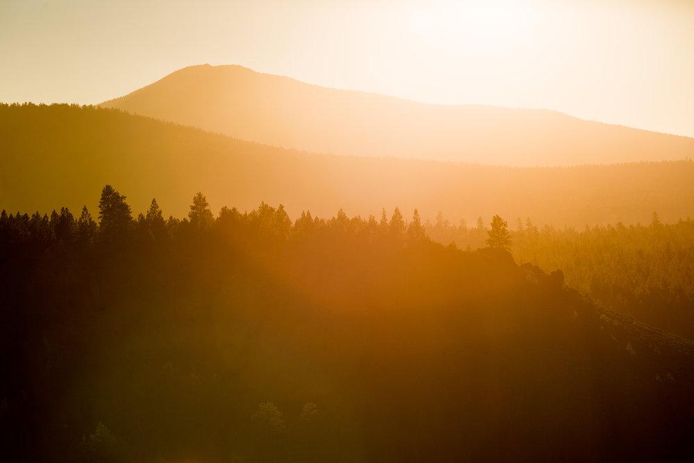 Sun kissed forests © Leslie Kehmeier