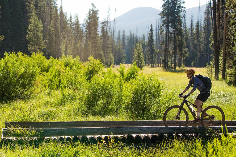 Alpine meadows © Leslie Kehmeier