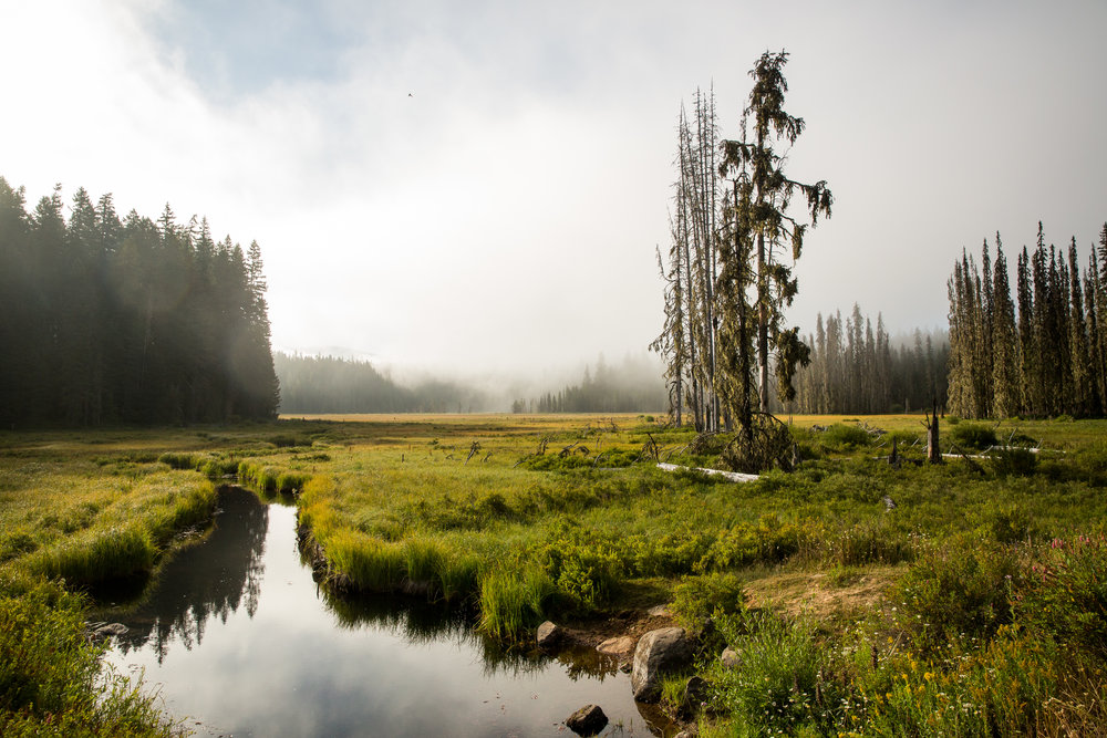 Circling Timothy Lake © Leslie Kehmeier