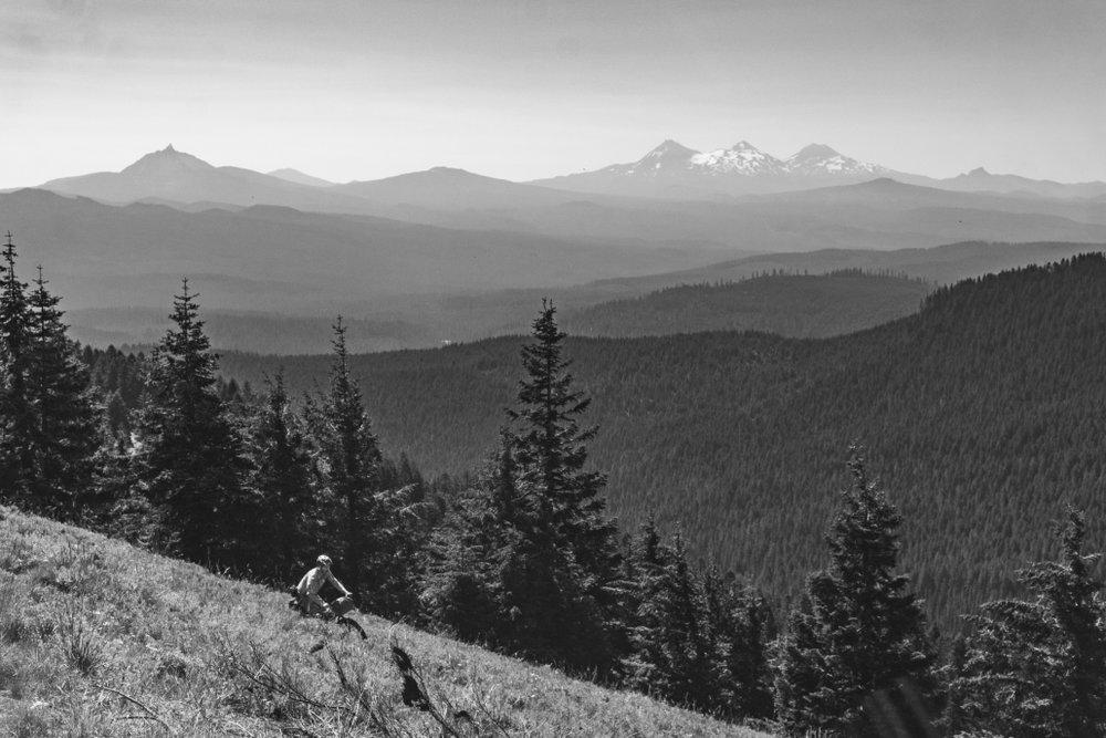 Old-Cascades-Crest-Oregon-Timber-Trail-1-1030x687.jpg