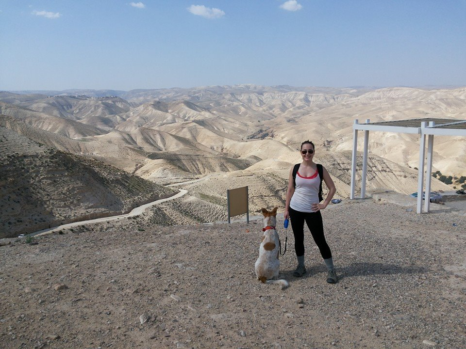 wadi top