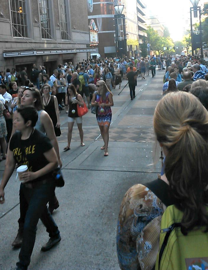 wds crowd