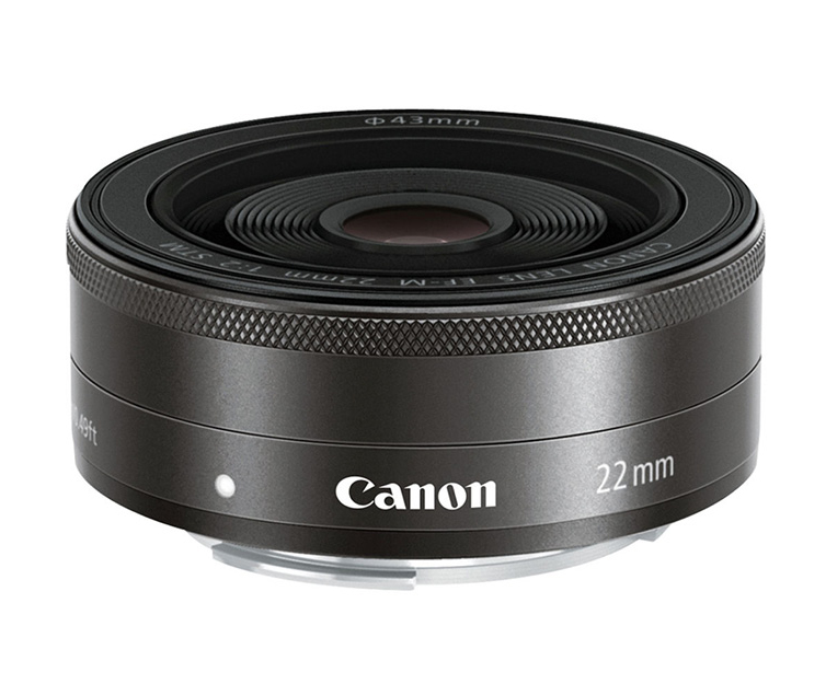 CANON 'PANCAKE LENS'  This lens is really small and with an aperature of 2 it does a great job in low light and taking photos with selective focus.