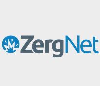 zergNet.png