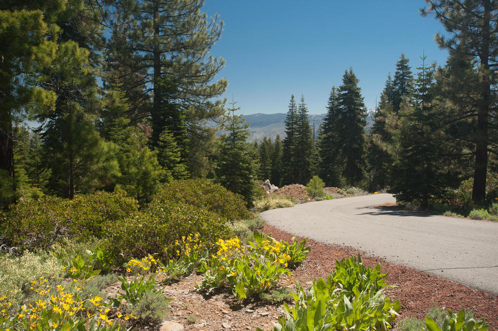 Alder Hill Lot Truckee CA-large-001-Alder Hill Lot-1500x999-72dpi.jpg