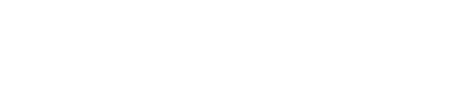 The Process Architects