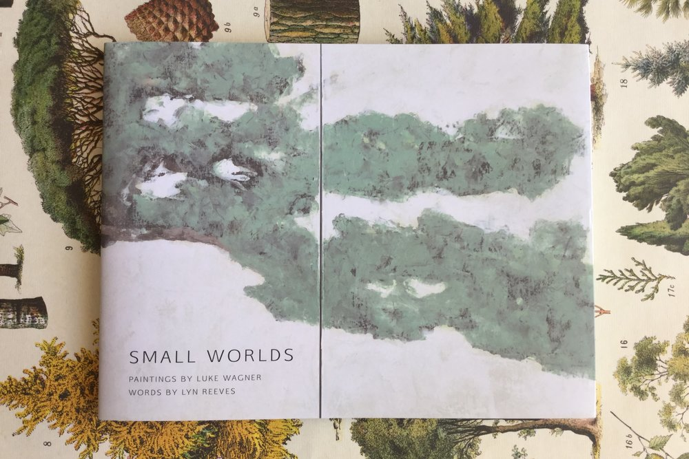 small worlds blog 110119.JPG