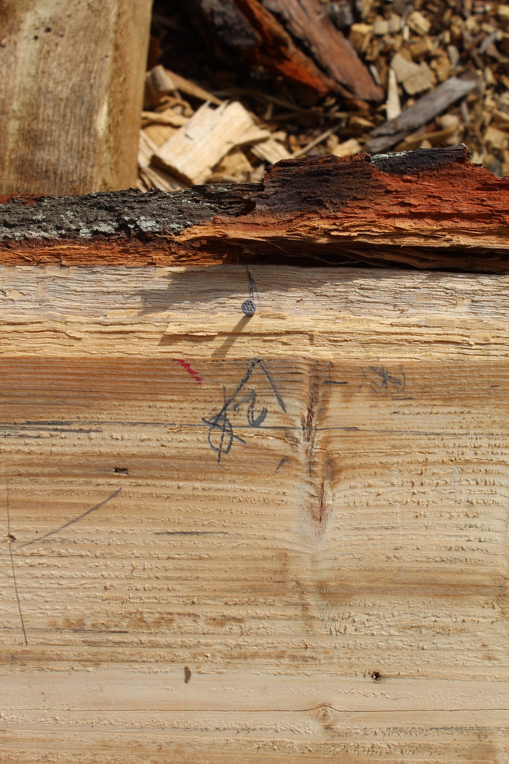 Distinctive marks laid out on the plank.
