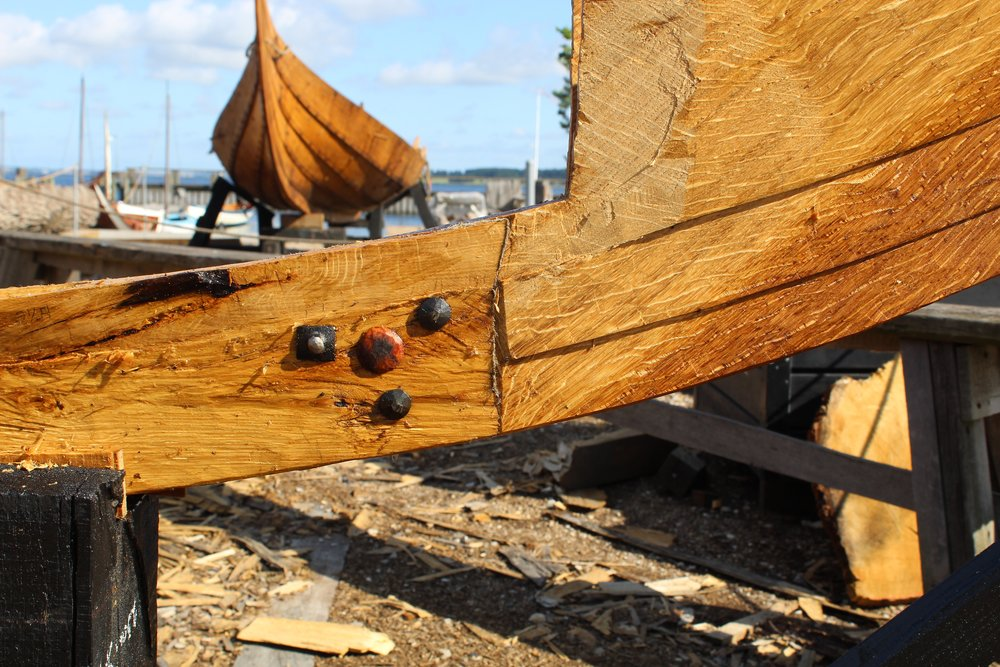 The Stem to Keel joint shown with rivets and a willow tree nail. Every marring serface gets either a rivet, spike, or tree nail. The Gislinge II in the background.
