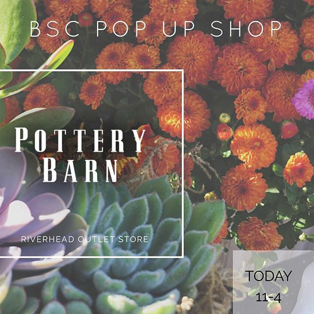 Don't miss our Fall Pop up Shop at @potterybarnoutlet_longisland TODAY from 11-4pm! We have mums, fall arrangements, succ topped pumpkins and more! IG friends get 15% off 🎃🤘🏽