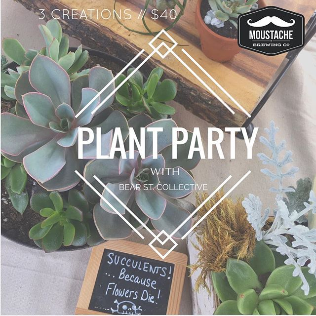 Make the perfect plant gifts, then keep them for yourself! DEC 12 at Moustache Brewery 6pm. Take home 3 of you own creations at this fun workshop! Reg. Link in bio. Spots limited!