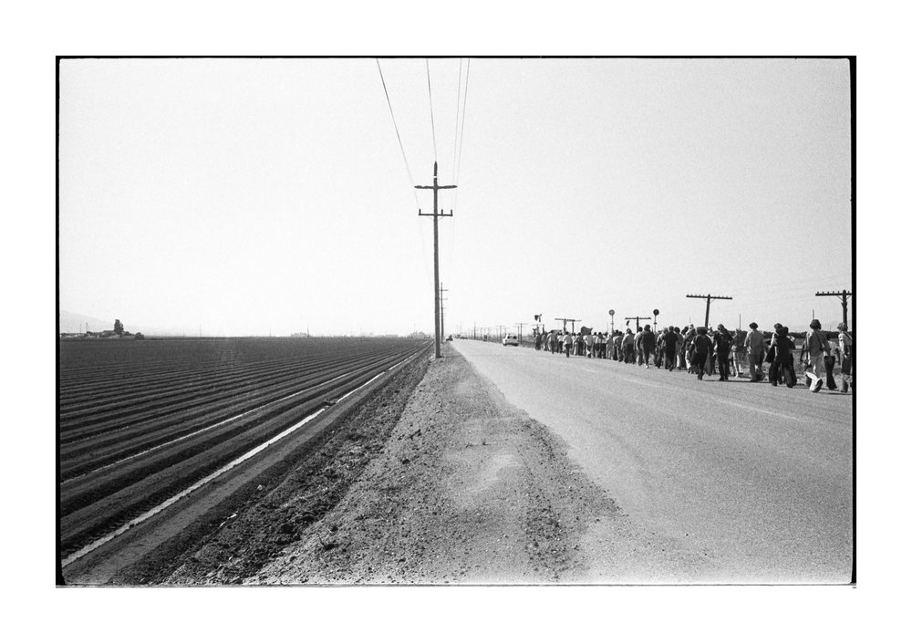 farmworkers-1-38.jpg
