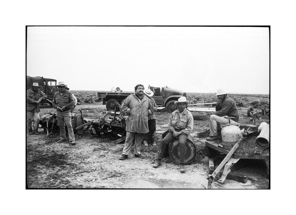 farmworkers3-1-6.jpg