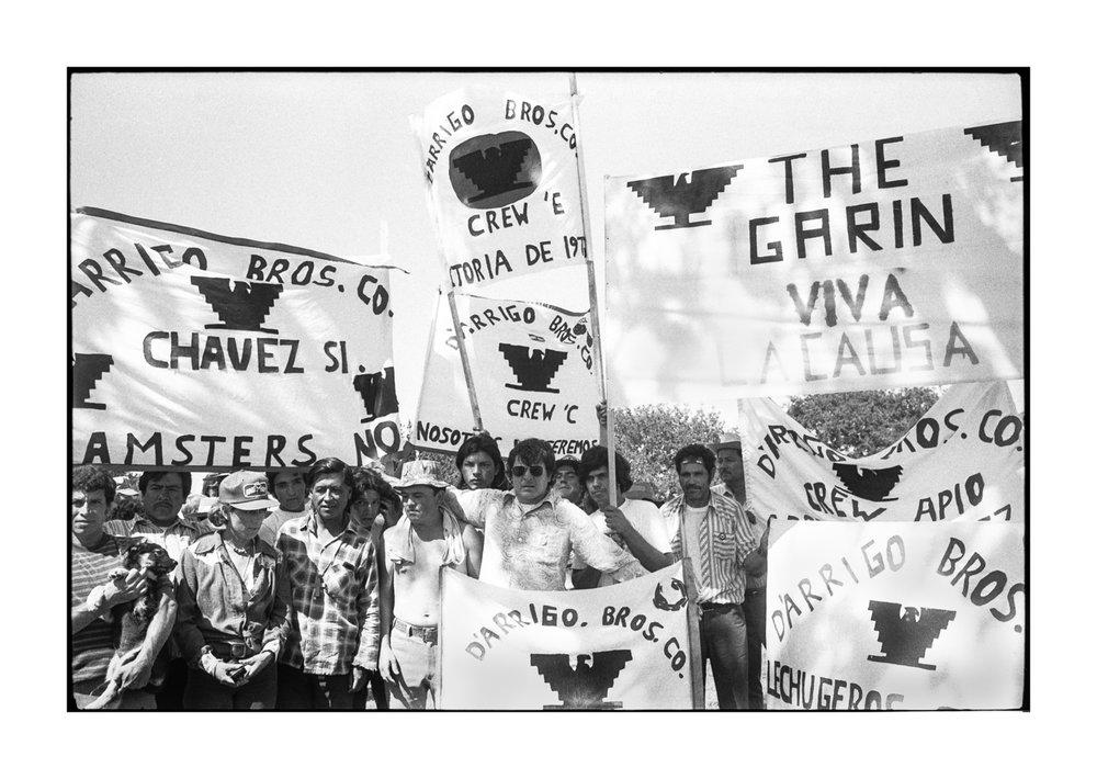 farmworkers-3.jpg
