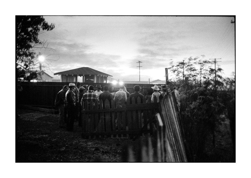 farmworkers-1-13.jpg