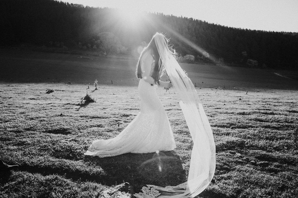Sarah and Harry Mayfield Oberon Wedding (513 of 923).jpg