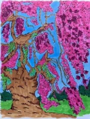 "The Arrival of Sakura -Mixed media on 11"" x 14"" marker paper (2017)."