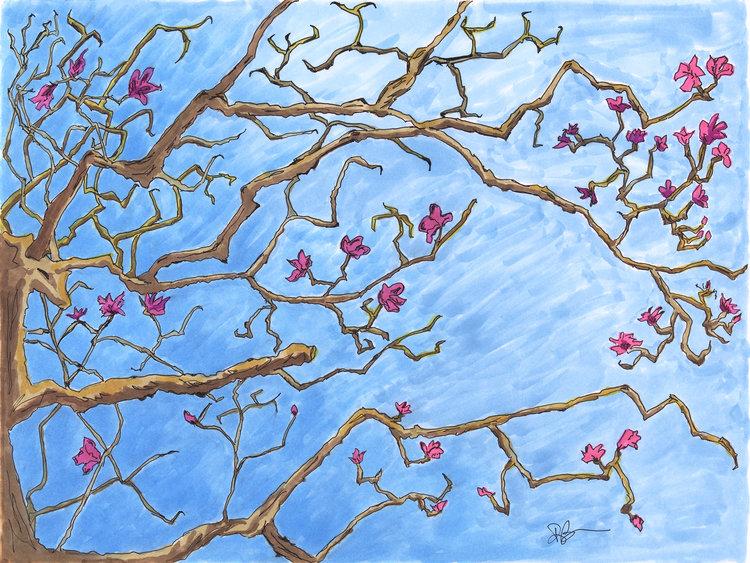 Color Bao Linh Art