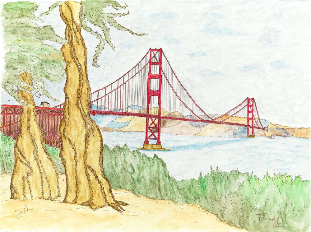 Tree View of Golden Gate Bridge